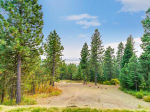 27 forested acres with beautiful southern views.