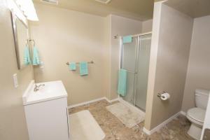 Basement Bath_3805