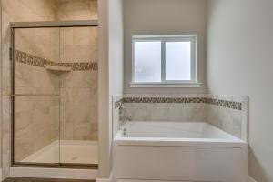 18Master tub & shower-SMALL