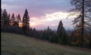 south 10 sunset #2