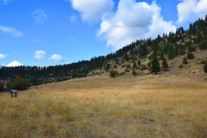 Ranch pasture and hill