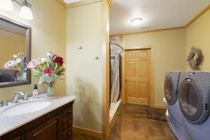 Daylight Basement Bathroom