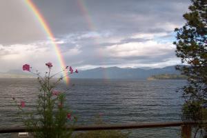 Over the raindbow