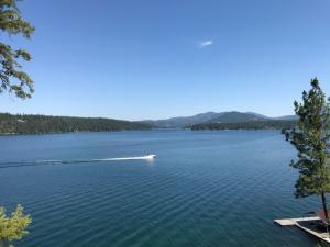 Views of Lake