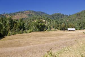 Pasture and Original Barn