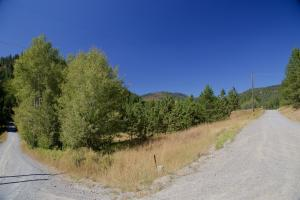 Beginning of Driveway