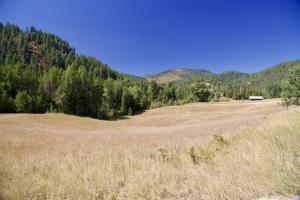 Large Pasture Area
