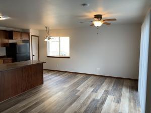 Livingroom and Kithcen