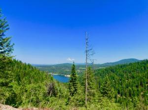 Lake Fernan Views