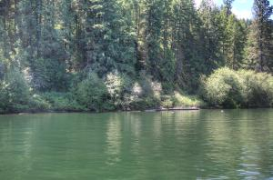 21688 S Papoose Rd, Worley, ID 83876