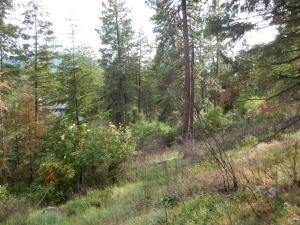 NKA Glacier Loop, Bayview, ID 83803