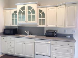 G apt kitchen cabinets