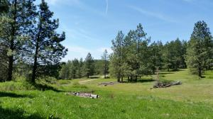 NKA Black Lake Hill P2 Hwy 3, Medimont, ID 83842
