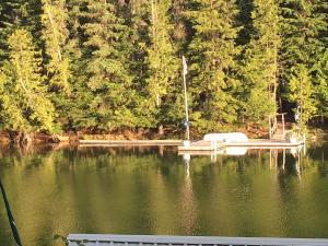 1781 W PRL SHR, Priest Lake, ID 83856