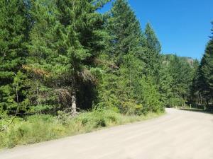 19 Bear Claw Rd, Clark Fork, ID 83811