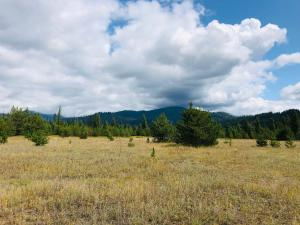 NNA Eastriver Road, Priest River, ID 83856