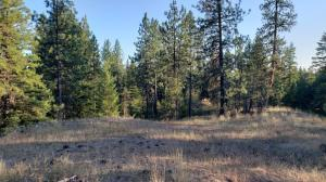Lot 1 Thunder Ridge, Rathdrum, ID 83858
