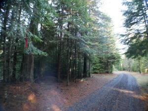 Santa Creek Road, St. Maries, ID 83861