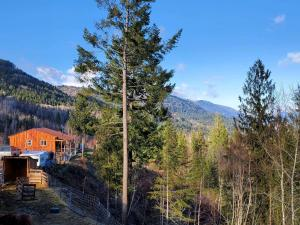 241 Castle Lane, Bonners Ferry, ID 83805