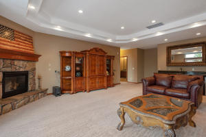 Downstairs/Family Room