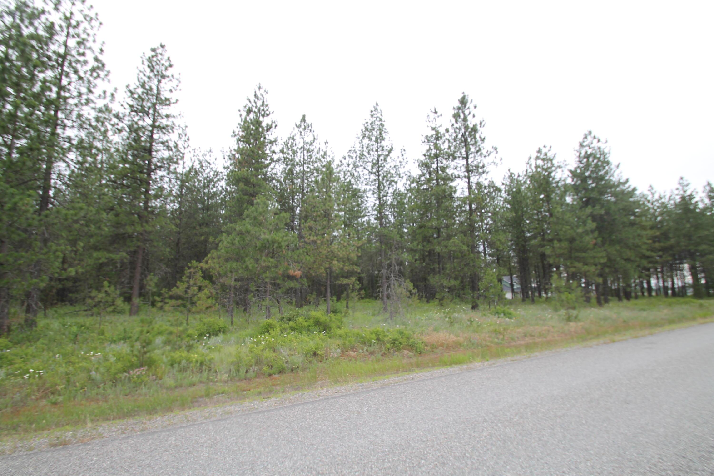 photo of N Clagstone Rd Athol Idaho 83801