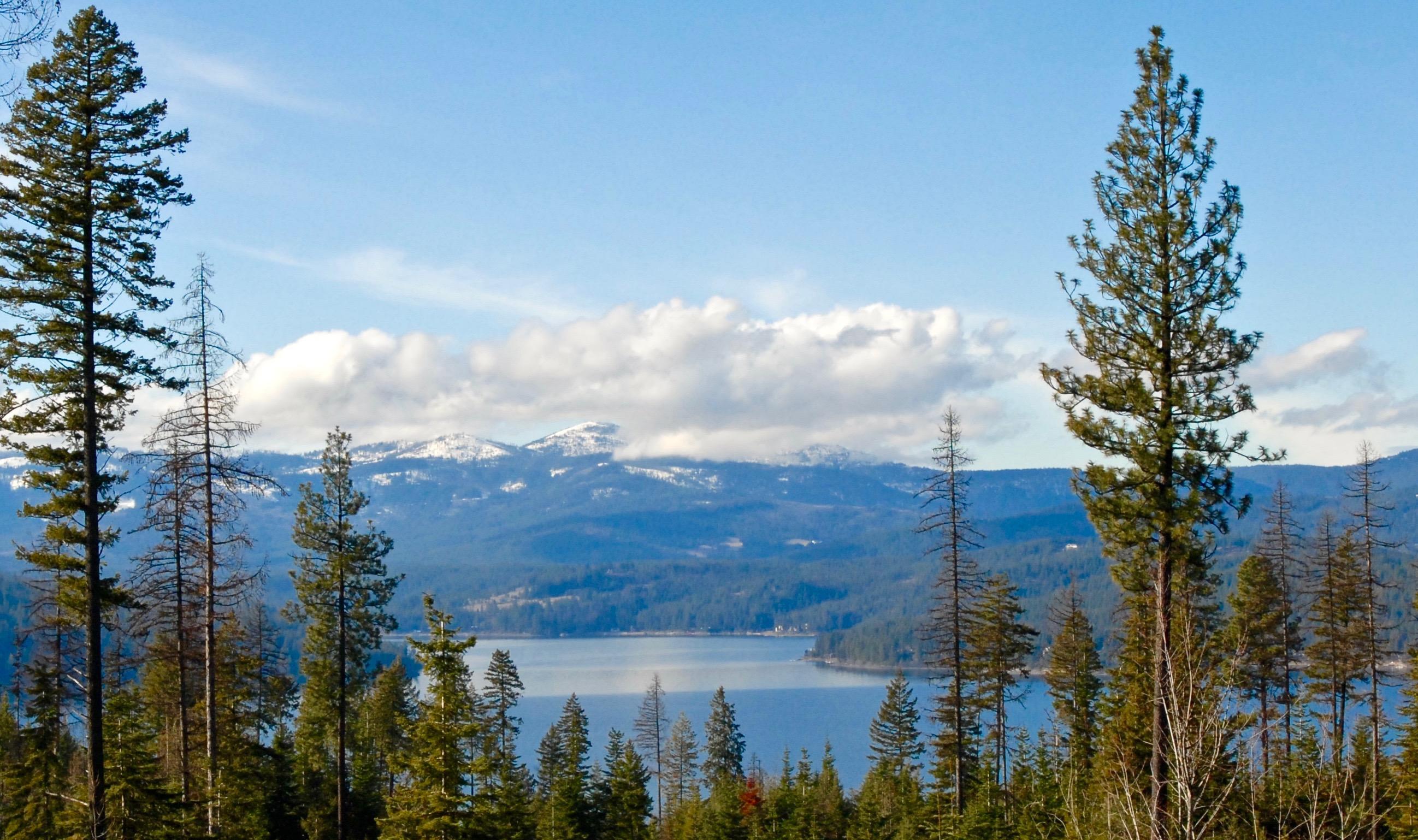 photo of   Kula Rd Harrison Idaho 83833