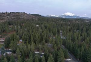 Hollister Hills 3