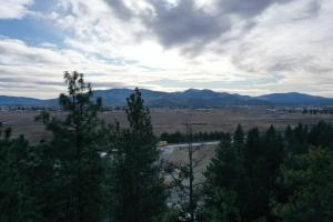 Hollister Hills 4