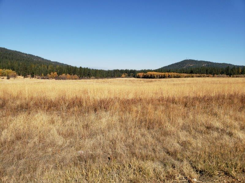 photo of HWY 95/County Line Rd Worley Idaho 83876