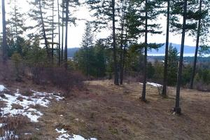 NKA Trappers Loop, Sandpoint, ID 83864