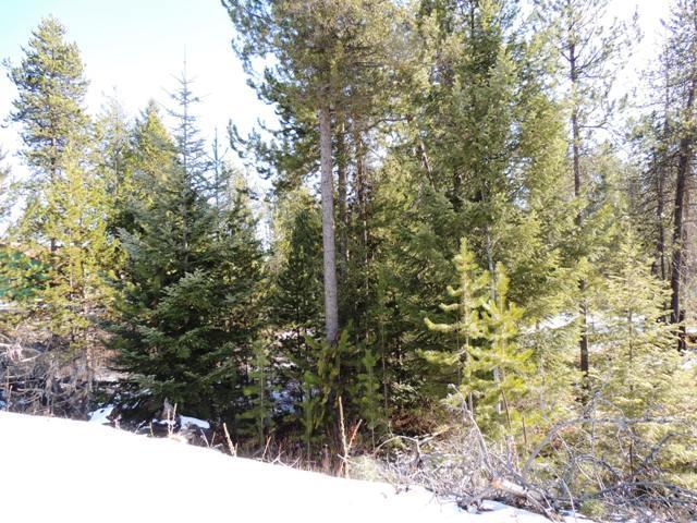 photo of Madison Street Spirit Lake Idaho 83869