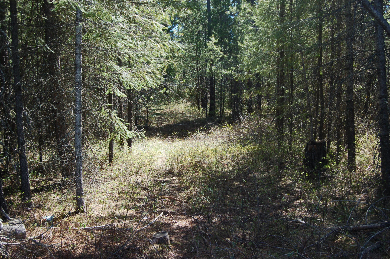 photo of Highway 54 Athol Idaho 83801