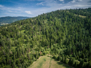 --55-115 acres of timber
