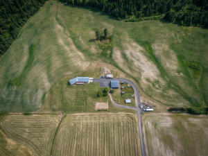 --61-Aerial showig house and outbuilding