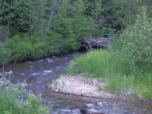 Rapid Lightning Creek Rd, Sandpoint, ID 83864