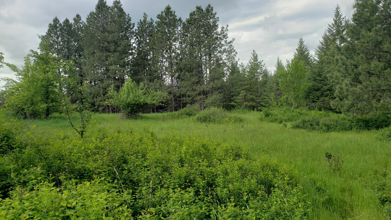 photo of  E Park Ave Harrison Idaho 83833