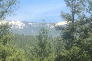 Lot 9 Rock Dome Road, Sandpoint, ID 83864