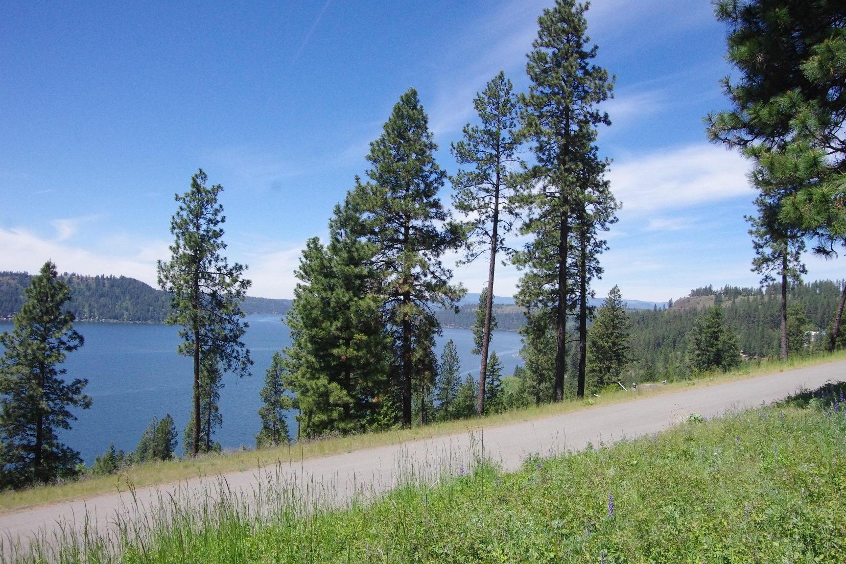 photo of Bedrock Dr Harrison Idaho 83833