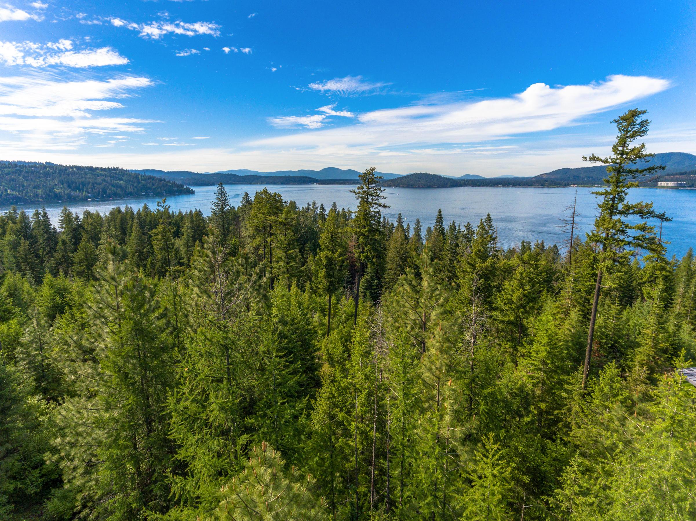 photo of   5215 S Jackleg Trail  Harrison Idaho 83833