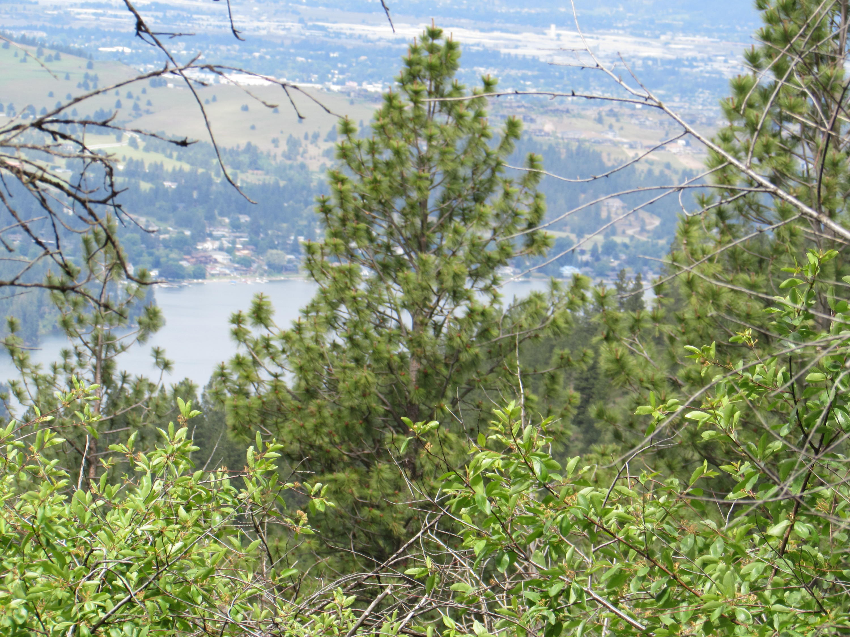 photo of No Site Address Post Falls Idaho 83854