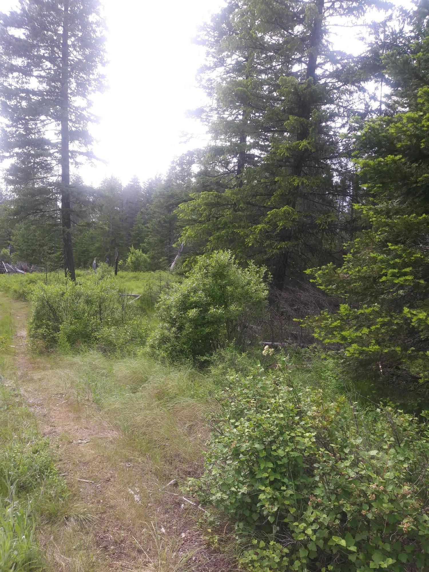 photo of  W Washington St Spirit Lake Idaho 83869