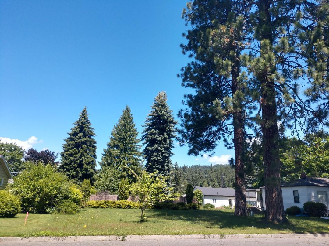 photo of E BOYD AVE Coeur d'Alene Idaho 83814