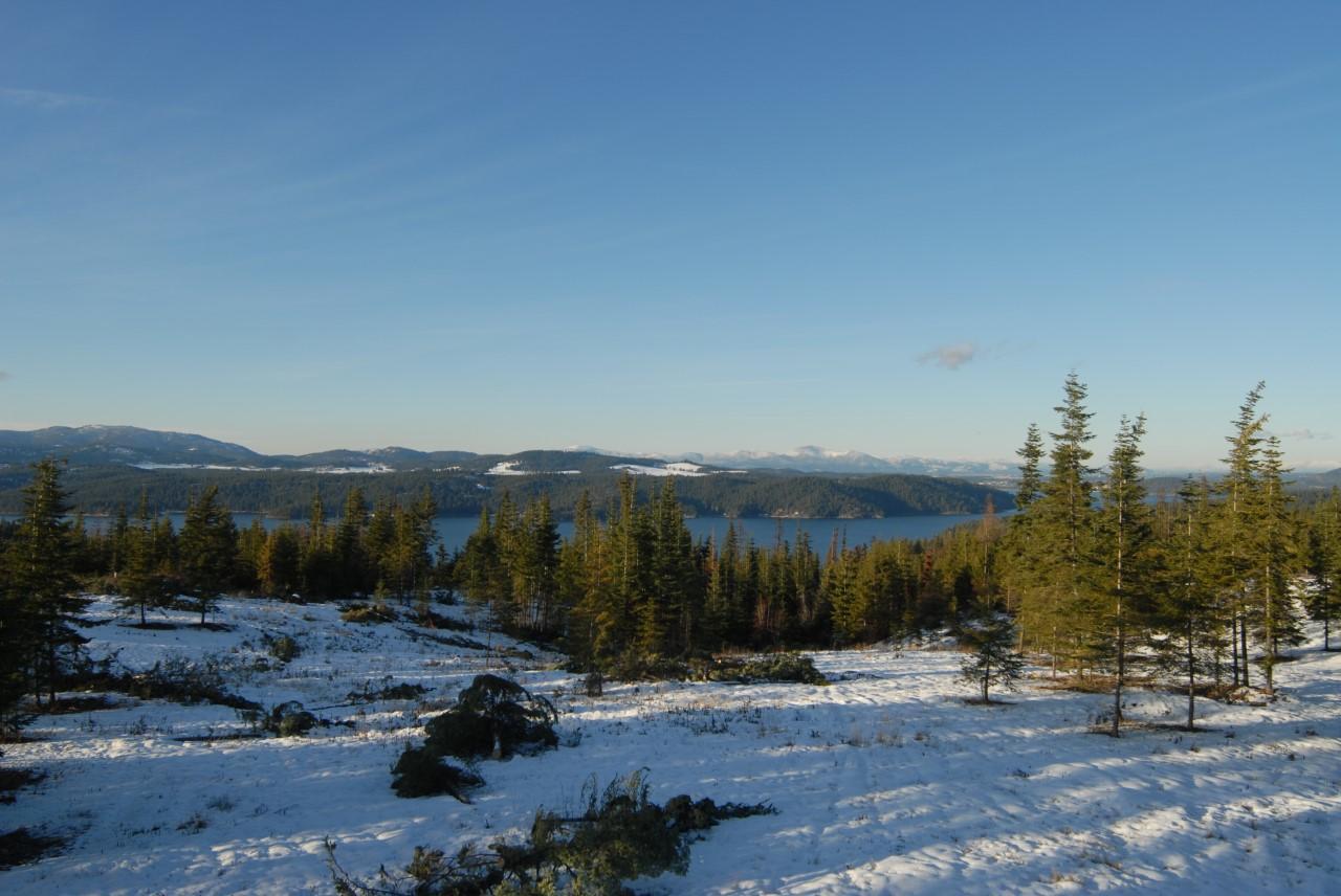 photo of Kalalua Rd Harrison Idaho 83833