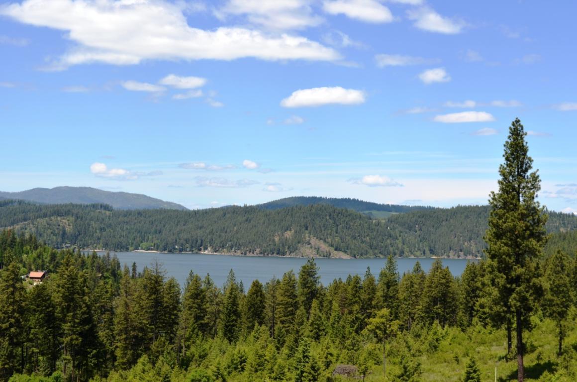 photo of  S BUCKRAIL RD Harrison Idaho 83833