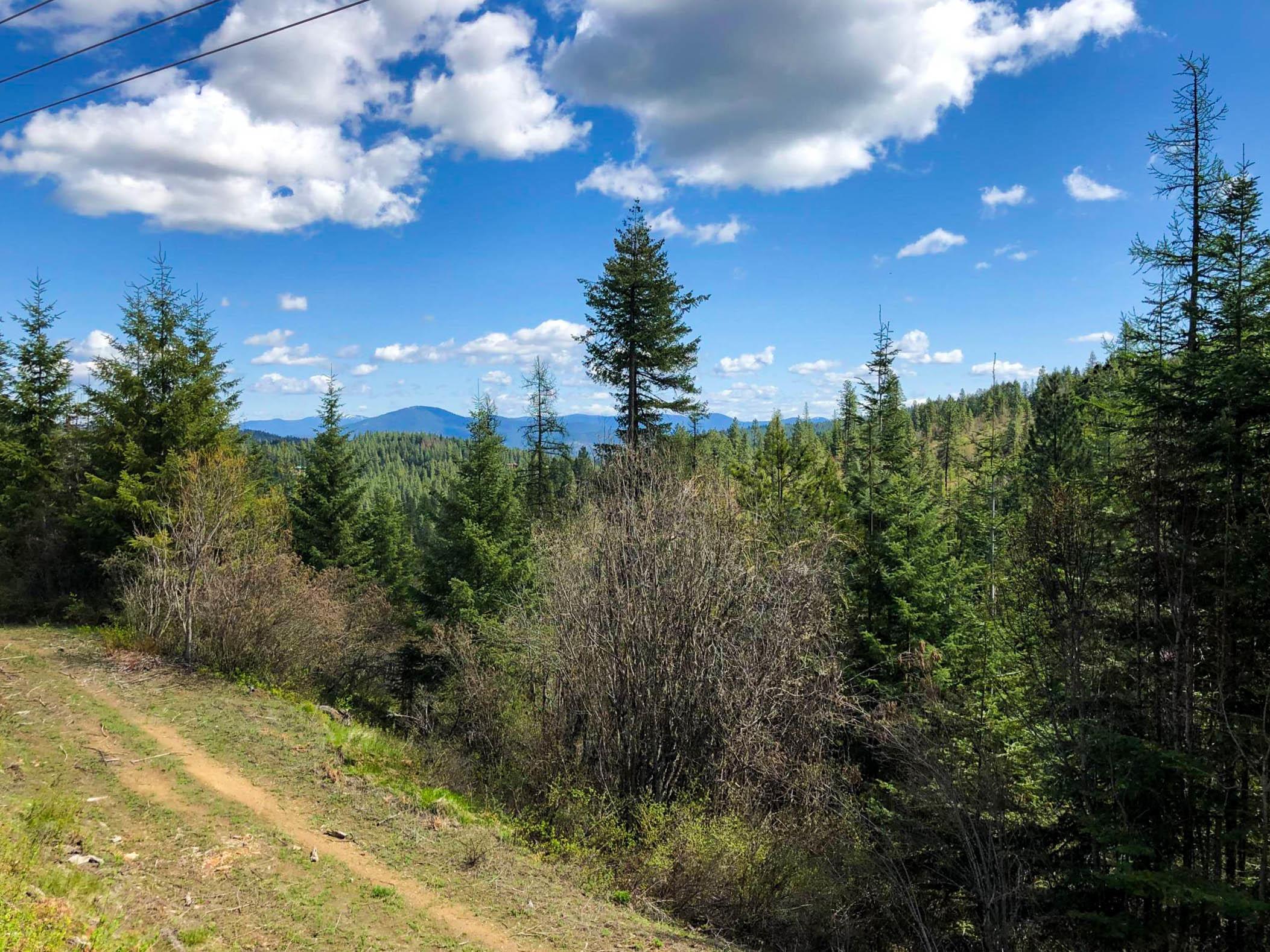 photo of S MOOSE CANYON RD Coeur d'Alene Idaho 83814