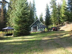 Cabin and yard