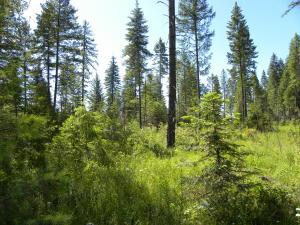 NNA Highway 54, Spirit Lake, ID 83869