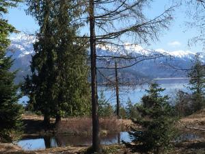 Pond toward lake