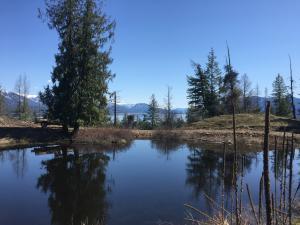 Pond toward alke