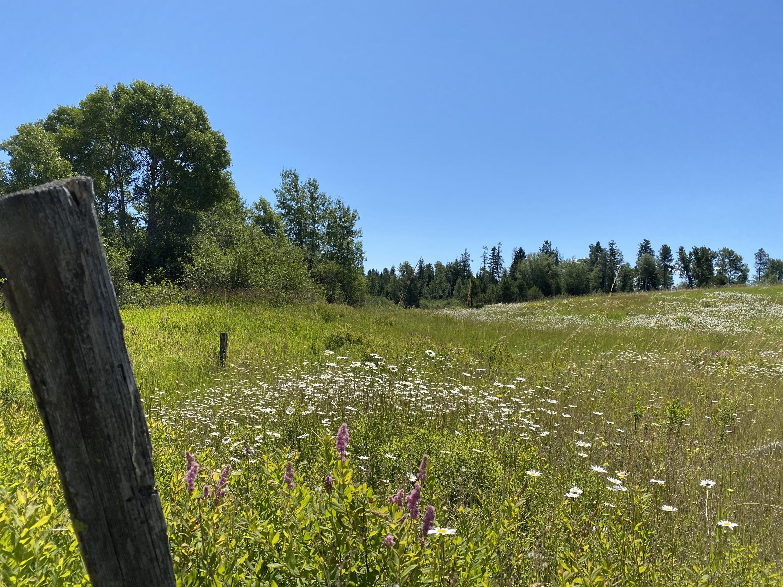 photo of NNA  Hwy 95 & Rockford  Worley Idaho 83876